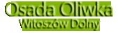 Osada Oliwka Witoszów Dolny – domy Świdnica